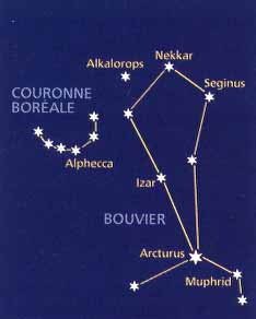 constellation bouvier